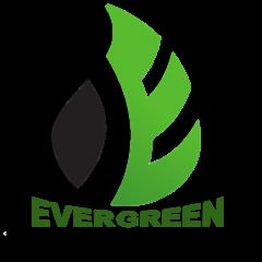 אוורגרין הובלות - לוגו